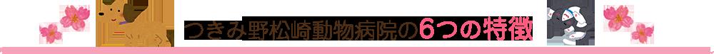 つきみ野松崎動物病院の6つの特徴